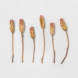 "25"" 6pc Dried Protea Compacta Flower Bunch Pink - Smith & Hawken™"