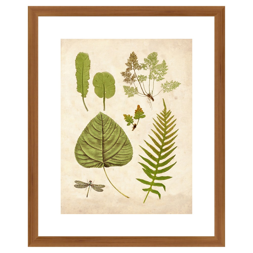 Is your wall looking a little bare? Bring any listless wall to life with the Traditional Leaves Wall Art from PTM Images. This digital print wall art features different ferns and an insect, all in a green hue to bring a woodland-inspired touch to your space. With a brown wooden frame, this digital wall art lends an artistic flair to your walls, making it a perfect complement to your living room or office decor. Pattern: Shapes.