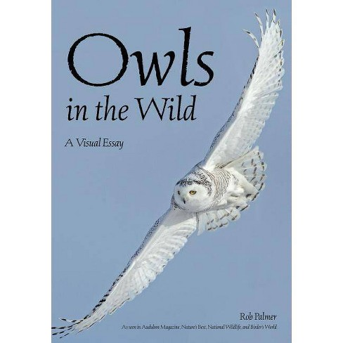 Owls in the Wild - by  Rob Palmer (Paperback) - image 1 of 1