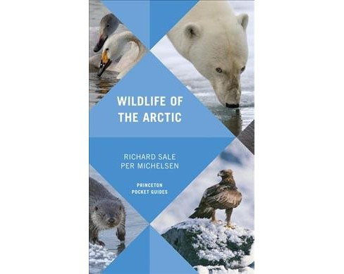 Wildlife of the Arctic -  by Richard Sale & Per Michelsen (Paperback) - image 1 of 1