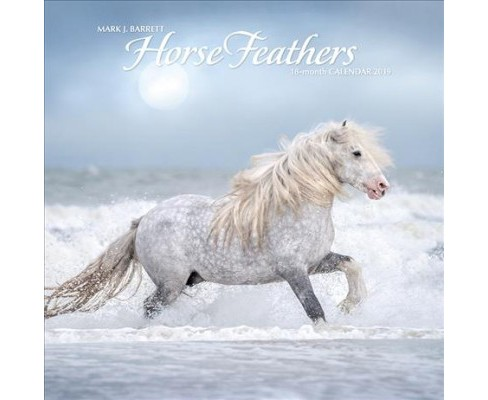 Horse Feathers 2019 Calendar -  (Paperback) - image 1 of 1