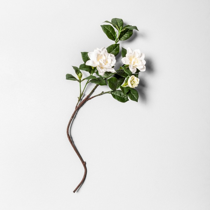 """30"""" Faux Gardenia Stem - Hearth & Hand™ with Magnolia - image 1 of 1"""
