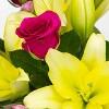 Colour Republic Hot Pink Garden Rose Bouquet - image 3 of 4
