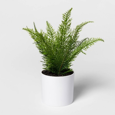 "9"" x 9"" Artificial Fern Arrangement in Pot White/Green - Project 62™"