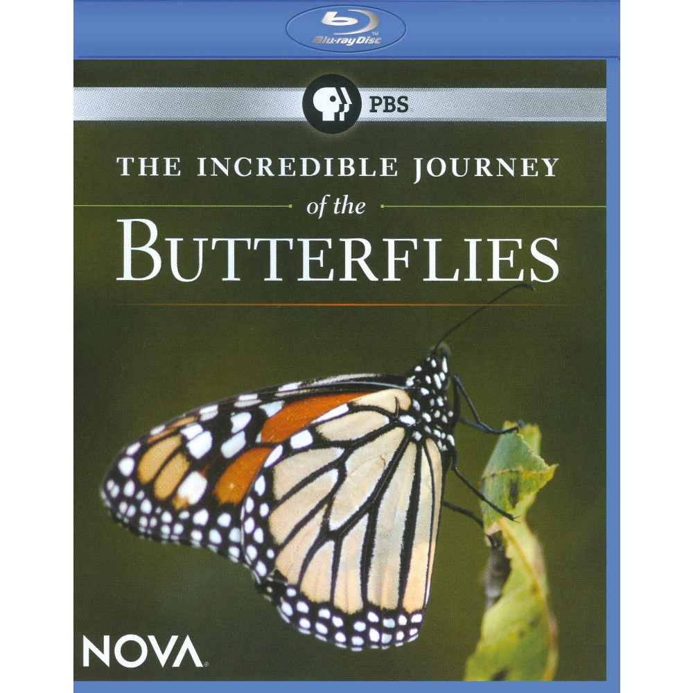 Incredible Journey Of The Butterflies (Blu-ray)