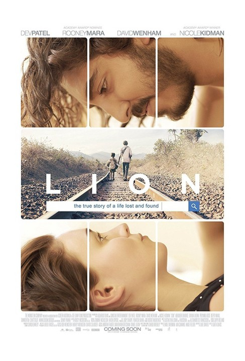 Lion (DVD) - image 1 of 1