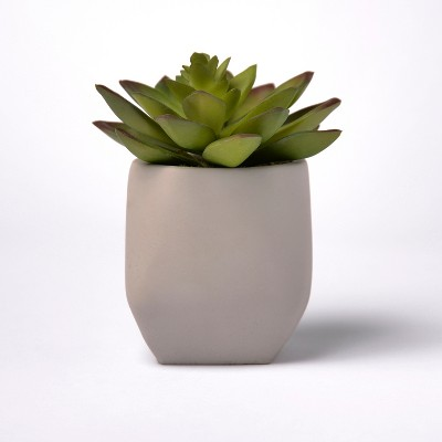 Artificial Succulent in Cement Pot - Lloyd & Hannah