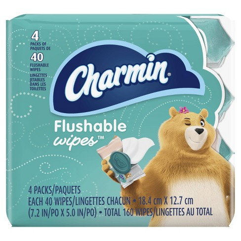 Charmin Freshmates Flushable Wipes - 40ct/4pk - image 1 of 4