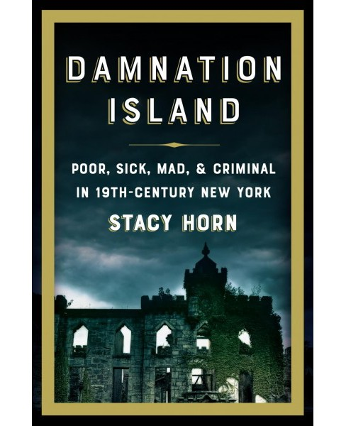 Damnation Island : Poor, Sick, Mad & Criminal in 19th-Century New York -  by Stacy Horn (Hardcover) - image 1 of 1