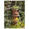 3pc Hanging Garden Planter System - Bloem - image 3 of 4