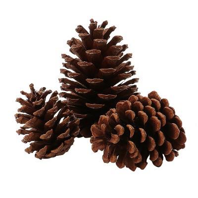 Artificial Christmas Scented Pinecones 15ct - Wondershop™