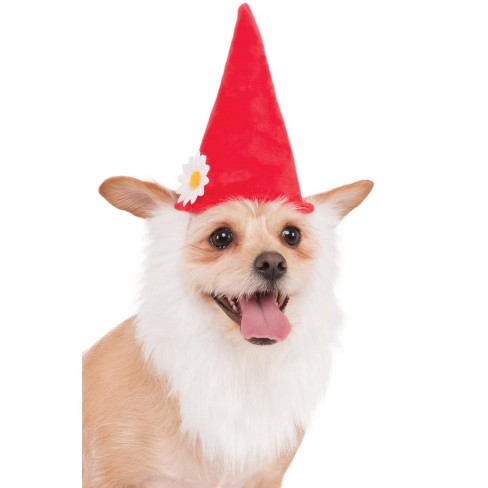 Rubies Garden Gnome Hat with Beard Pet Accessory - image 1 of 1