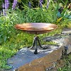 "8.5"" Stainless Steel Birdbath Bowl with Tripod Stand Polished Copper Plated - ACHLA Designs - image 2 of 4"
