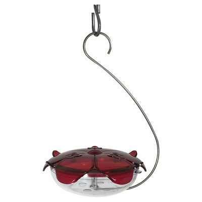 Droll Yankees The Ruby Sipper Hanging Hummingbird Feeder - Clear