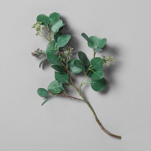 Eucalyptus Pick Stem - Hearth & Hand™ with Magnolia - image 1 of 4