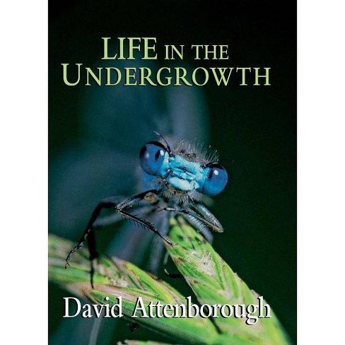 Life in the Undergrowth - by  David Attenborough (Hardcover) - image 1 of 1