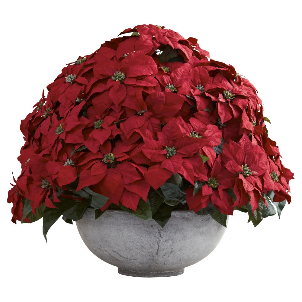 Giant Poinsettia Arrangement with Decorative Planter - Green, Red
