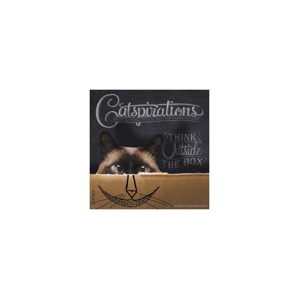 Catspirations 2019 Calendar - (Paperback)
