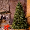 10ft National Christmas Tree Company Dunhill Fir Hinged Full Artificial Christmas Tree with 1200 Clear Lights - image 3 of 4