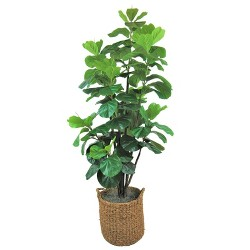 6ft Artificial Fiddle Leaf Fig Tree in Basket with Handles Green - LCG Florals