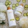 Raw Sugar Skin Green Tea + Cucumber + Aloe Vera Sensitive Body Wash - 25 fl oz - image 4 of 4