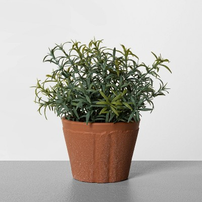 "6.5"" Faux Rosemary Potted Plant - Hearth & Hand™ with Magnolia"