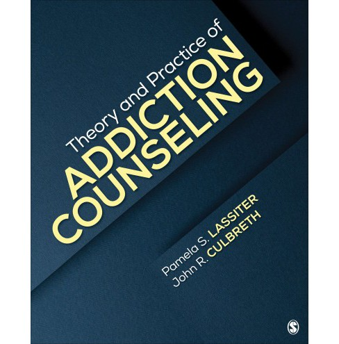 Theory and Practice of Addiction Counseling (Paperback) - image 1 of 1