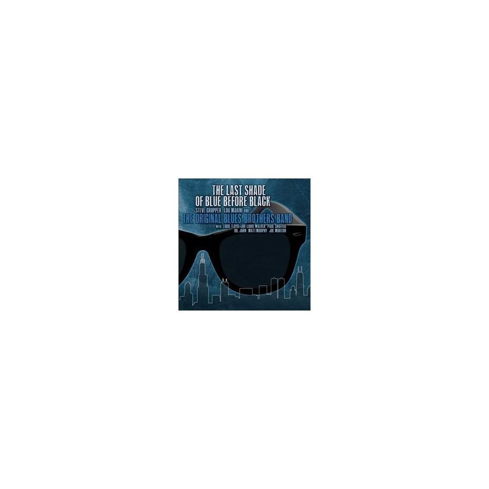 Original Blues Broth - Last Shade Of Blue Before Black (CD)