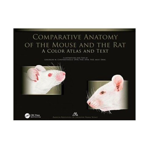 Comparative Anatomy Of The Mouse And The Rat A Color Atlas And