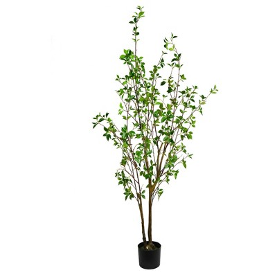 Vickerman Artificial Potted Baby Leaf Tree.