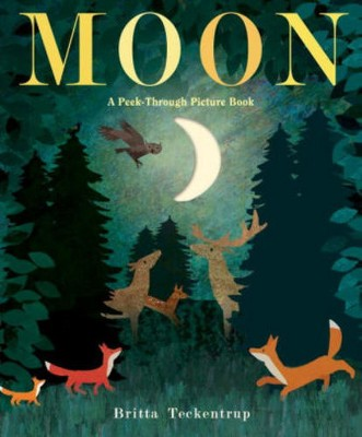 Moon by Brittany Techentrup (Hardcover)