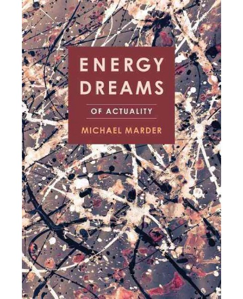 Energy Dreams : Of Actuality (Paperback) (Michael Marder) - image 1 of 1