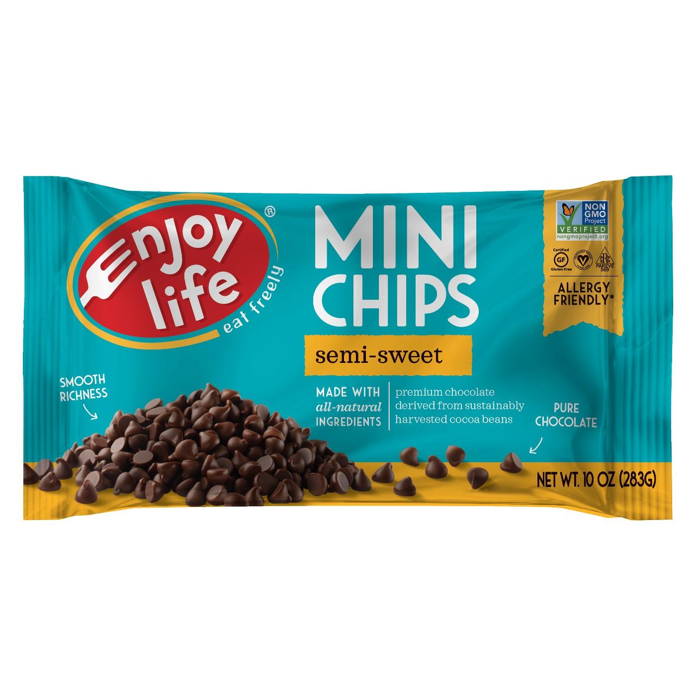 Enjoy Life Foods Gluten Free, Allergy Friendly Semi-Sweet Mini Chocolate Chips - 10oz - image 1 of 1