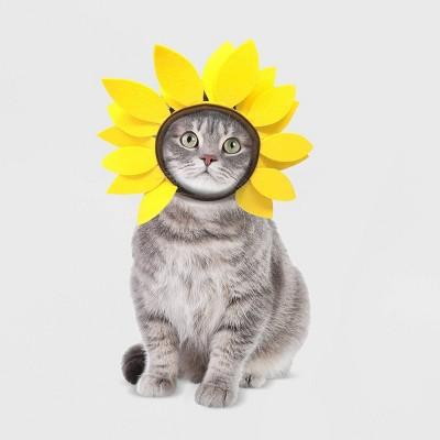 Sunflower Cat Costume - Hyde & EEK! Boutique™