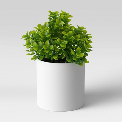 "6"" x 6"" Artificial Boxwood Arrangement - Threshold™"