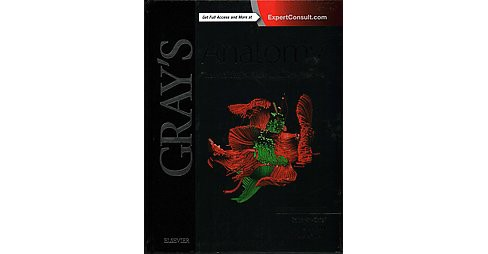 Gray's Anatomy : The Anatomical Basis of Clinical Practice (Hardcover) - image 1 of 1