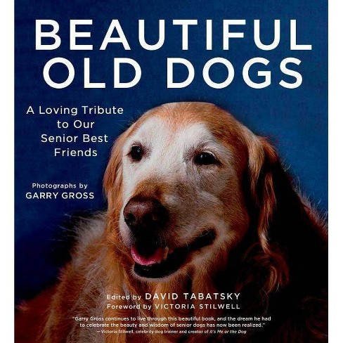 Beautiful Old Dogs - (Hardcover) - image 1 of 1