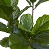 """65"""" Fiddle Leaf Tree UV Resistant - Nearly Natural - image 3 of 3"""