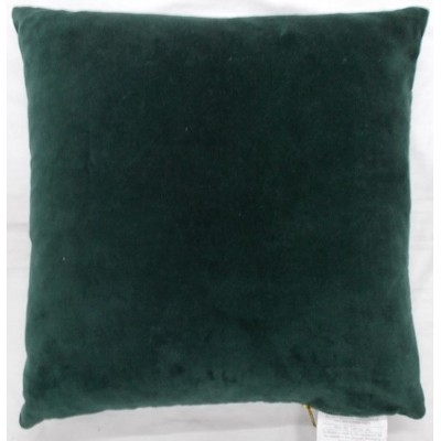 Velvet With Exposed Zipper Square Throw Pillow Dark Green - Project 62™
