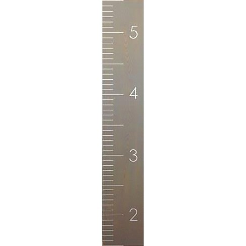 Gray Growth Chart - Pillowfort™ - image 1 of 1