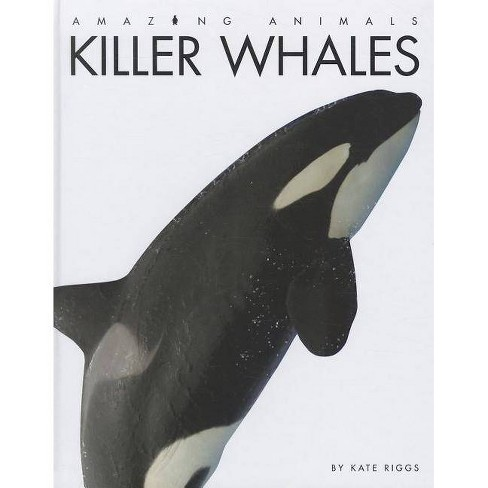 Killer Whales - (Amazing Animals (Creative Education Hardcover)) by  Kate Riggs (Hardcover) - image 1 of 1