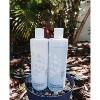 Purezero Moroccan Argan Oil Shampoo - 12 fl oz - image 5 of 6