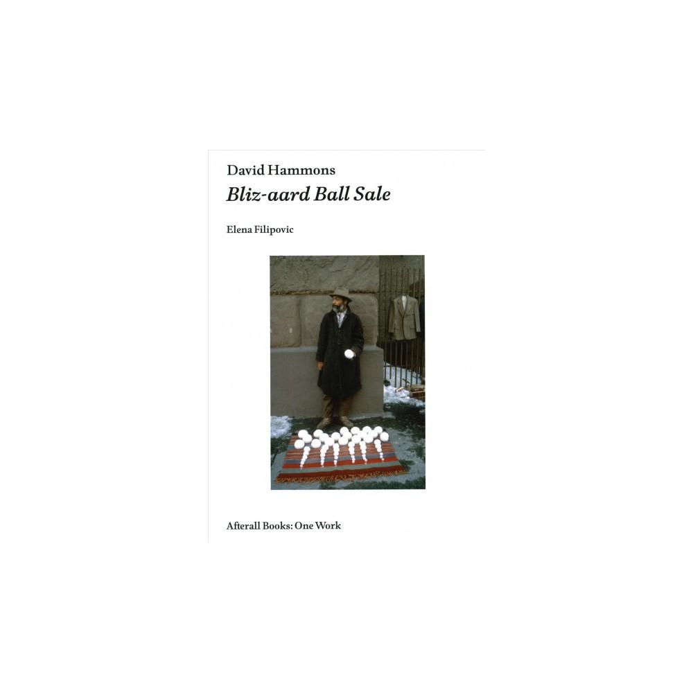 David Hammons : Bliz-aard Ball Sale - (One Work) by Elena Filipovic (Paperback)