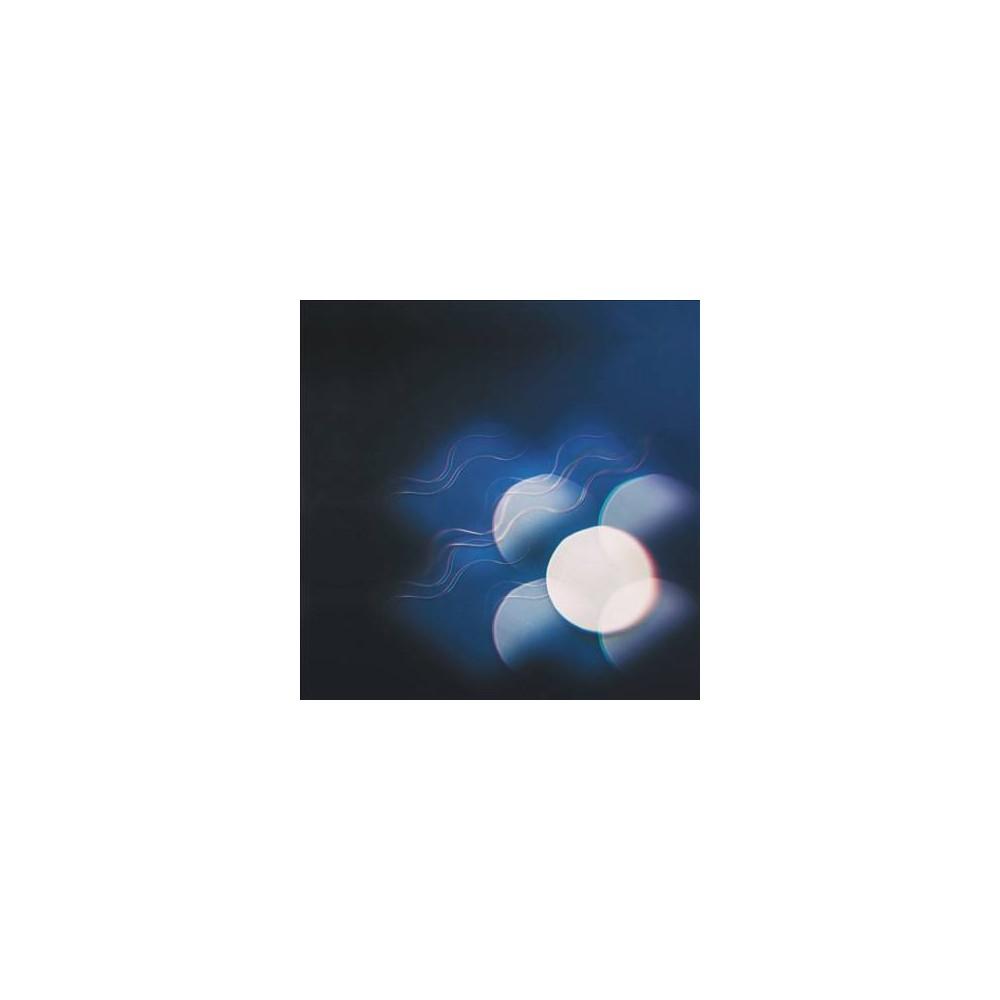 Mutual Benefit - Thunder Follows The Light (CD)