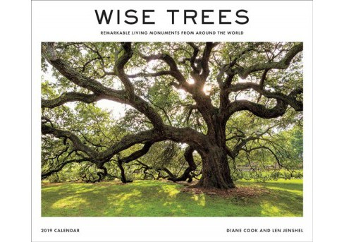 Wise Trees 2019 Calendar : Remarkable Living Monuments from Around the World -  (Paperback) - image 1 of 1