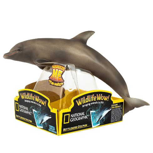 National Geographic Bottlenose Dolphin - image 1 of 1