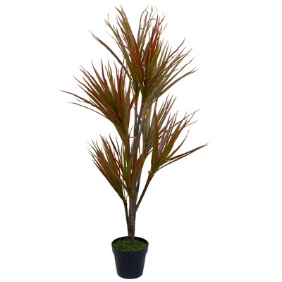 """Northlight 55"""" Green and Red Artificial Dracaena Potted Plant"""