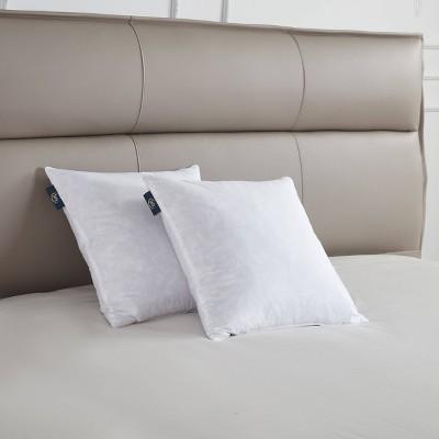 "Serta 20""x20"" Medium Firm 2pk Decorative Feather Pillow Insert"