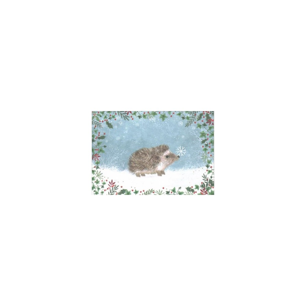 Happy Hedgehog Small Holiday Cards - (Stationery)