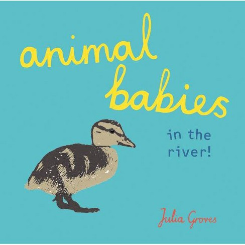 Animal Babies in the River! - (Board_book) - image 1 of 1